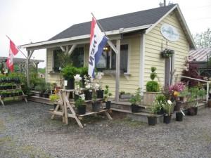 Springvale Nurseries Garden Center